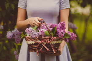 woman with lilacs in a basket